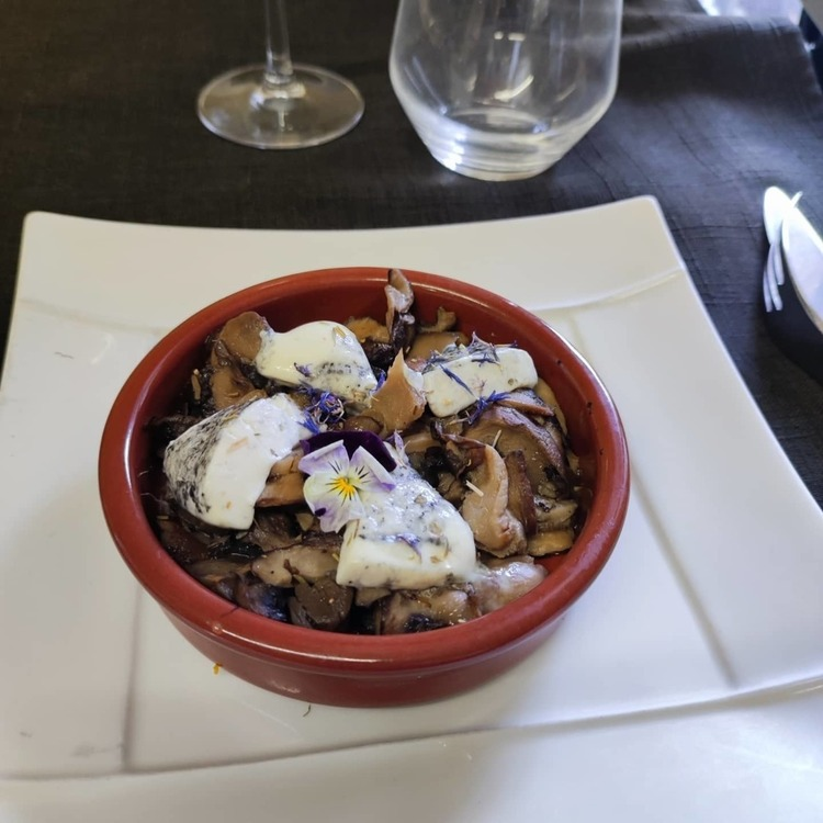 Entrée bio Cassolette trilogie de champignons et fromage de chèvre du Ciran